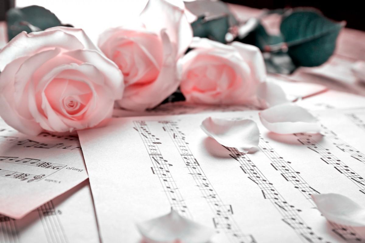 Matrimonio Tema Musical : Matrimonio a tema musica come allestire il ricevimento